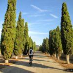 Iniciamos la ruta en dirección al cementerio de Beneixama