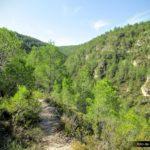 Sendero hacia el refugi de Castelló