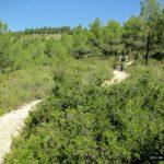 Senda hacia el Refugi de Castelló