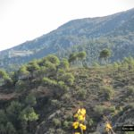 Vista de la Font Roja desde la senda