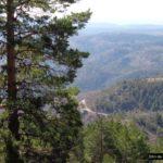 Vistas desde la pista forestal