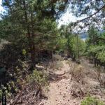 Sendero de bajada hacia Noguera de Albarracín