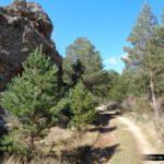 Inicio de la subida por el Barranco de la Tejera