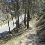 El sendero desemboca en la carretera