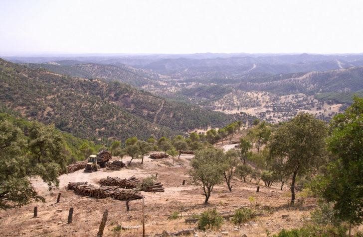 Ciclismo en ruta por el Valle de Los Pedroches