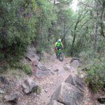 El sendero nos va subiendo sin descanso hacia la base de la Peña Montañesa