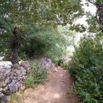 La vía pecuaria nos lleva entre muros de piedra hasta Los Molinos
