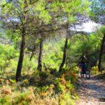 Iniciamos la subida hacia El Castellar