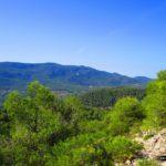 Vista del Parc Natural del Carrascar de la Font Roja desde el Alt del Castellar