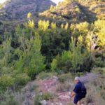 El sendero nos baja bruscamente hacia el fondo del Barranco del Agua Negra