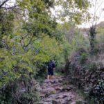 Camino pedregoso junto al rio por el Barranco del Agua Negra