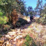 Escaleras que nos sacan del barranco a la pista de tierra