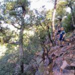 Sendero hacia el pico de Espadán