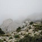 La niebla le da un aspecto increible al paisaje