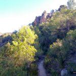 Sendero de subida por el Barranco del Mas