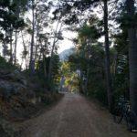 Pista hacia el Alt del Benicadell desde les Planisses