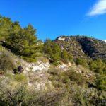 Sendero que nos sube por el Barranco de la Caseta