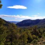 Vistas desde lo alto del barranco de la Caseta