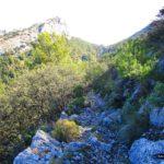 Senda tras el Pas de la Rabosa hacia el barranco de Sacarest