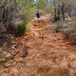 El sendero de subida a la Mola tiene gran pendiente y es de firme muy irregular