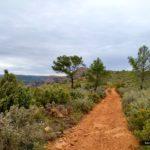 Seguimos camino en dirección Norte hacia La Buitrera