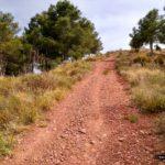 En la bifurcacion tomamos la pista de la izquierda con mayor pendiente