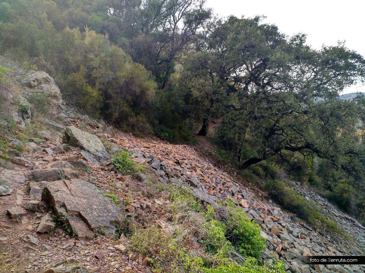 El sendero hacia la Font de Cabres es muy bonito