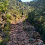Senda del rincón hacia el Coll de Garrut