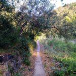 Tramo final de la ruta junto al lecho del Rio Belcaire