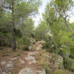 Tramo de sendero junto al Barranco del Agua más técnico