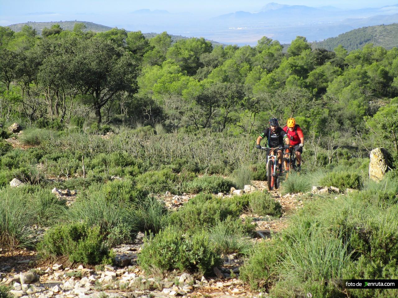 Sendero hacia los Altos del Barranco