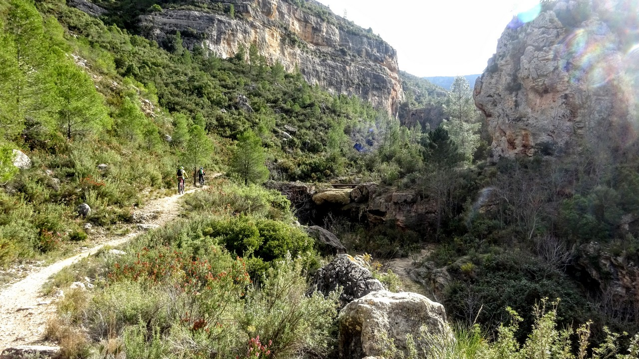 Por el Arroyo de Cortes hacia el sendero del paso de la Franca