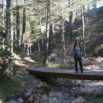 Pequeño puente en el Barranc de la Pegunta