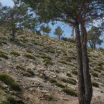 Tramo final del sendero antes de llegar a la cima del Penyagolosa
