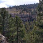 Barranc del Forn