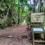 Final de la ruta de las nacientes de Marcos y Cordero