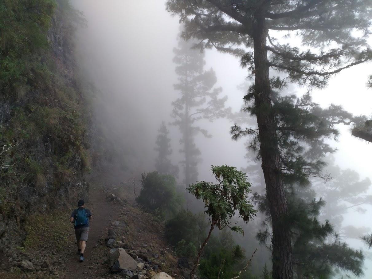En todo momento nos acompaña la niebla
