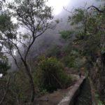 Senda junto al canal en la ruta de las Nacientes de Marcos y Cordero