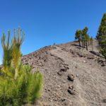 Subiendo al Volcán de la Deseada