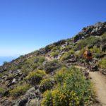 Seguimos camino hacia el Pico de la Nieve