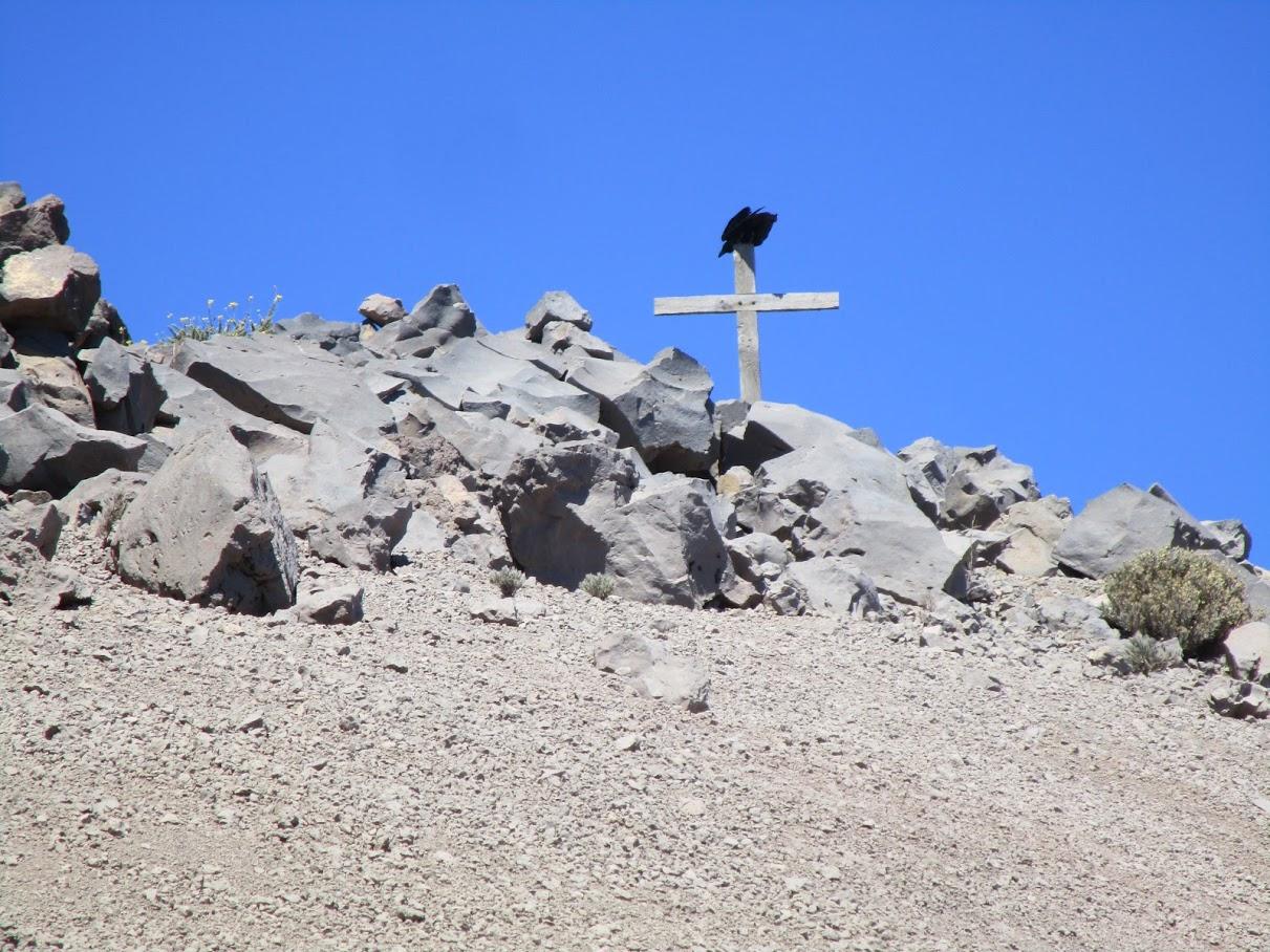"""""""El Pajarraco"""" me esperaba en el Pico de la Nieve"""
