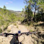 Tramo de sendero rocoso en el Barranco de la Juana