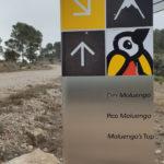 Indicador al Pico Moluengo