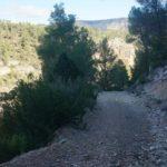 Bajada al lecho del rio Cabriel