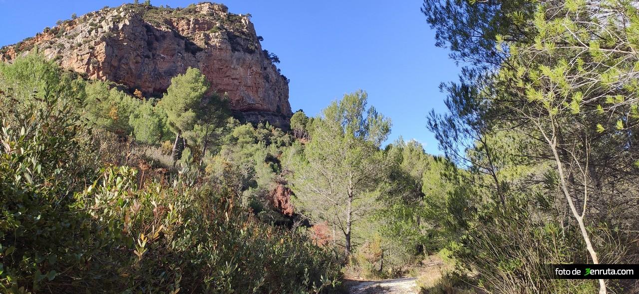 Abandonamos la rambla entre pinos y la Roca del Morral