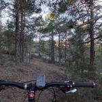 Las sendas siempre transcurren entre el bosque