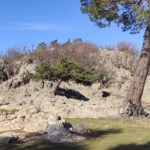 Curiosas formaciones rocasas junto al camino