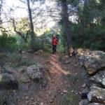 Bonito tramo de senda entre la pinada
