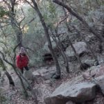 La senda es empinada y transcurre entre densa vegetación