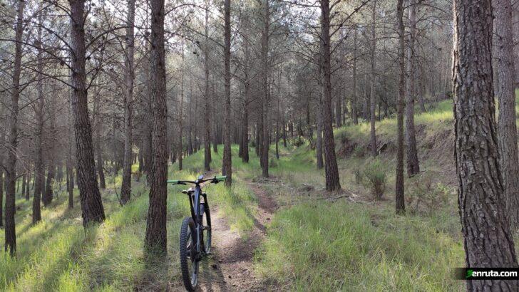En Tierra Salvaje – Biketrails Valencia